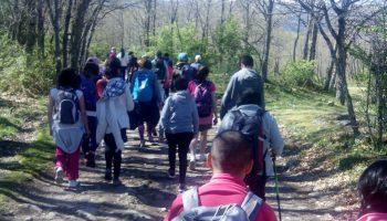 Paseo por el Valle de Valsaín