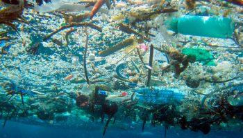Sin Plástico la Vida Mejor